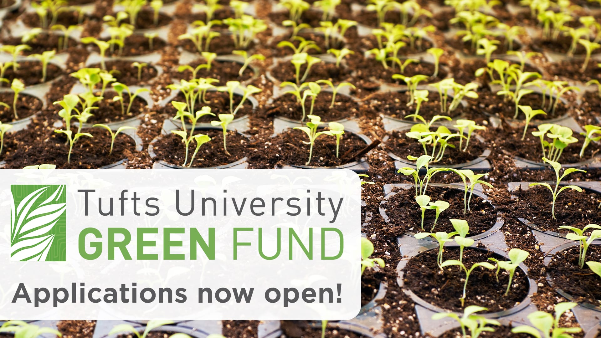 Green Fund Applications Now Open