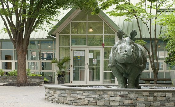 Front view of SMFA and SMFA Rhino Statue