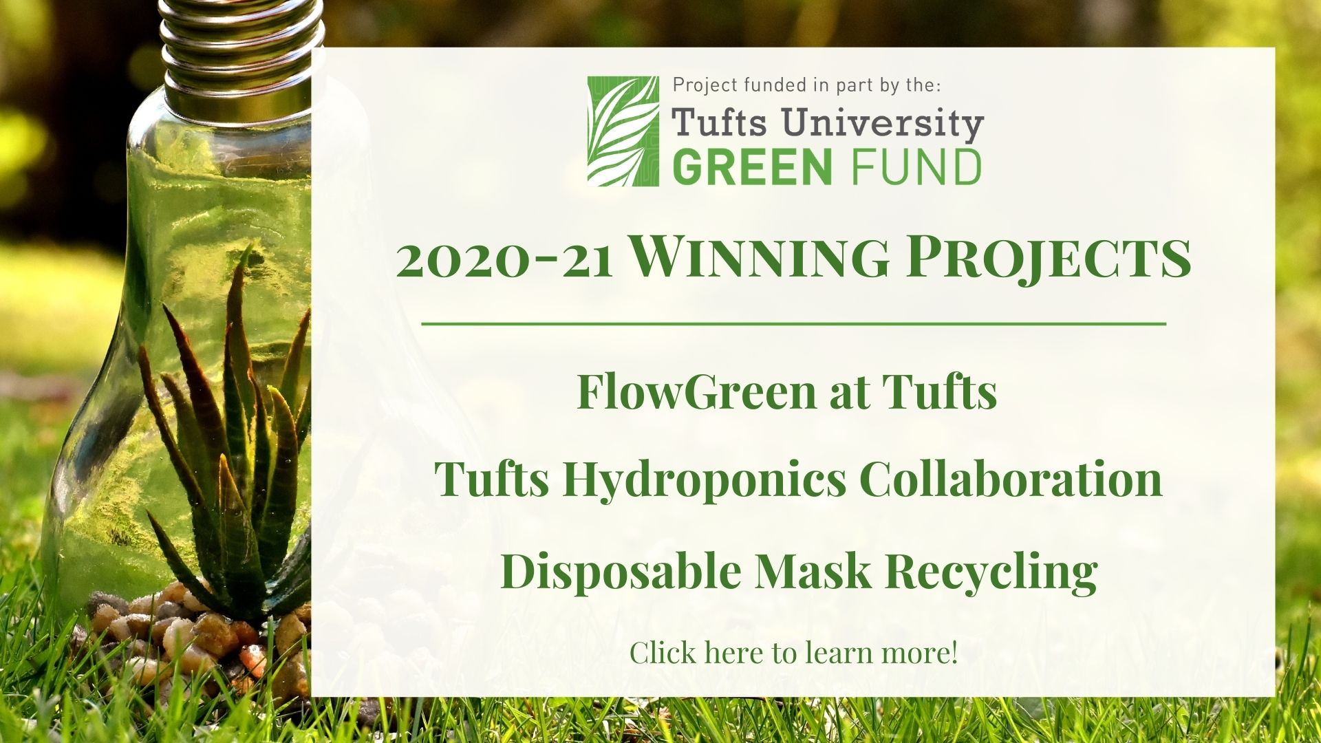 Green Fund Winning Projects!